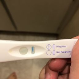 Equate Early Result Pregnancy Test Horizontal Line